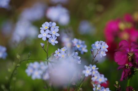 2011_04_29 15_19_00.jpg