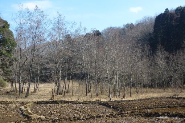 2012_02_19 11_35_09.jpg