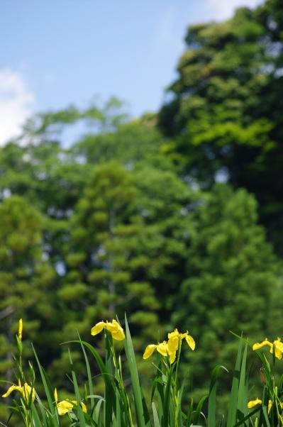 2012_05_27 09_54_10.jpg